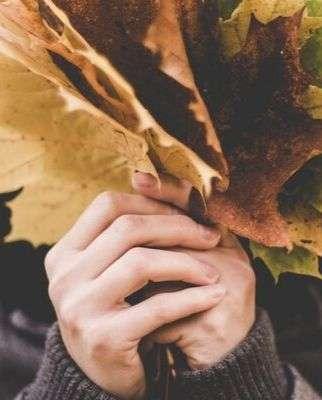 Bienvenido otoño mindfulness
